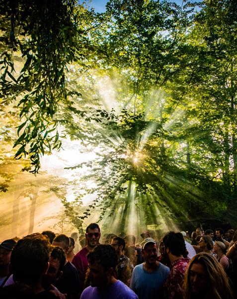 Dekmantel, festival, review, 2018, calypso, calypso magazine